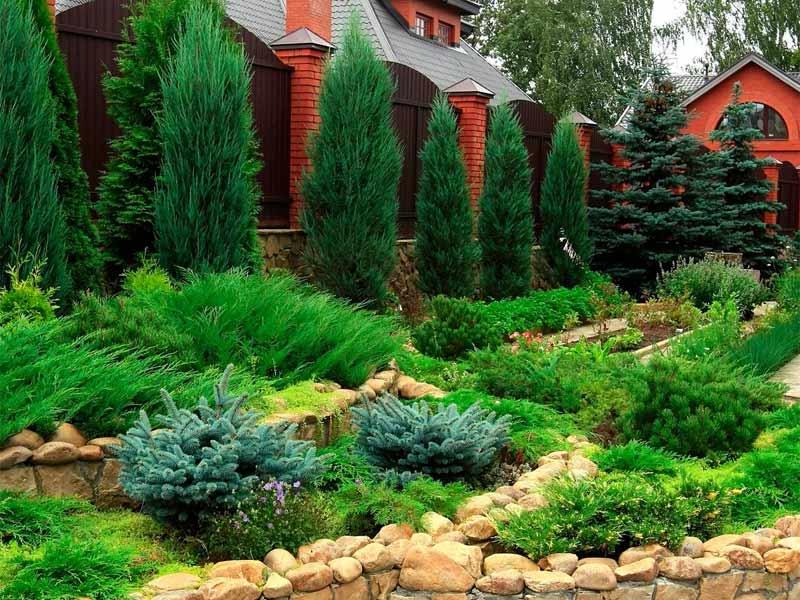 Ландшафт загородного дома с применением хвойных насаждений