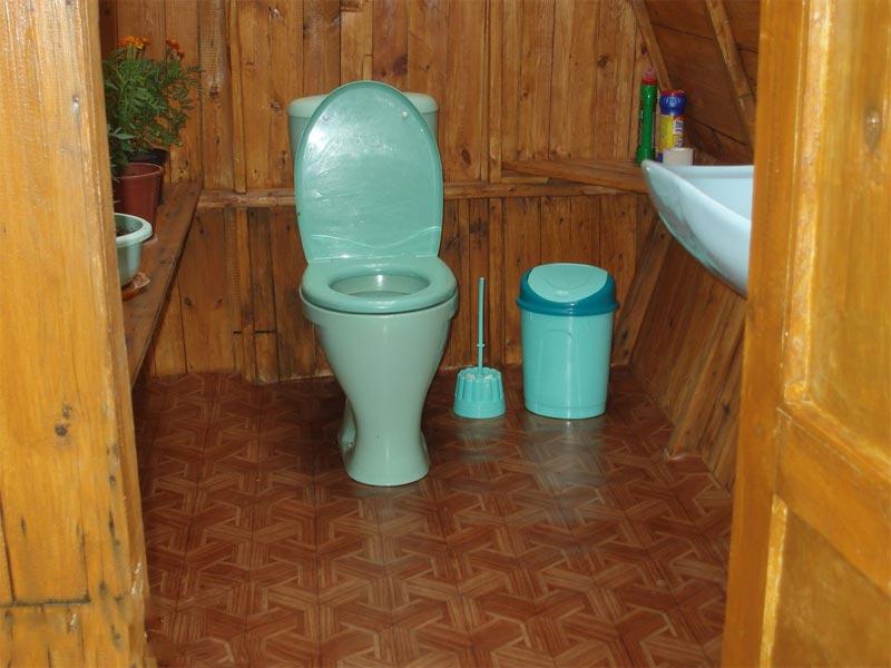 Туалет в загородном доме и его внутренняя отделка