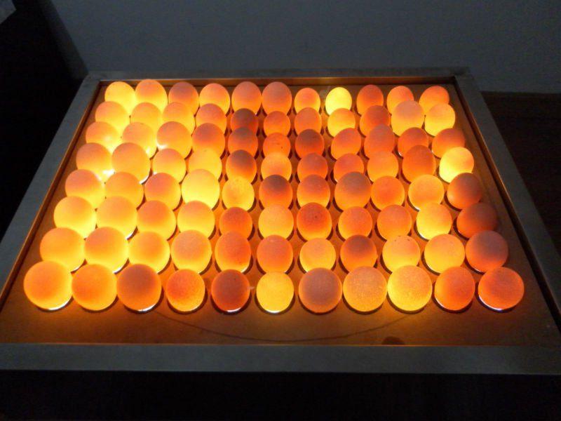 Овоскопирование гусиных яиц и как часто можно просвечивать