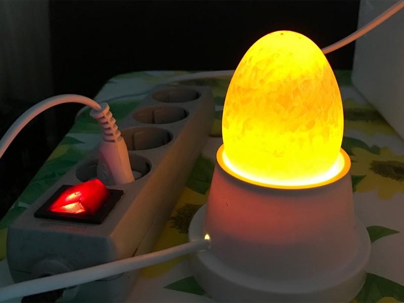 Овоскопирование утиных яиц при инкубировании