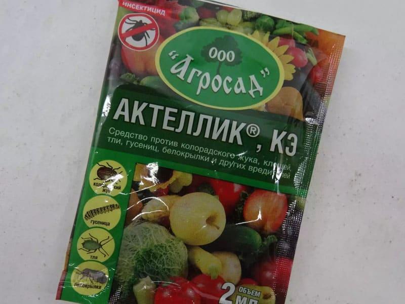 Препарат Актеллик. Инструкция