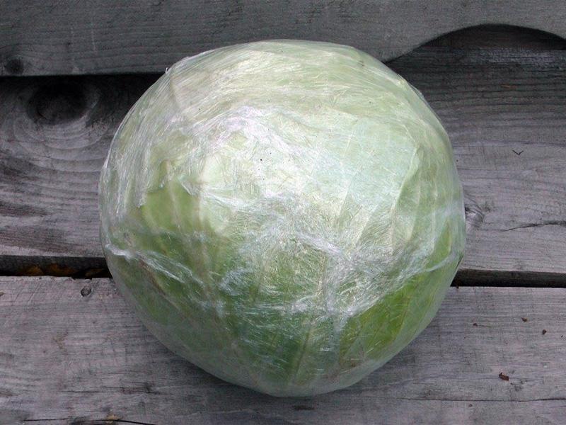 Как сохранить зимой капусту в свежем виде в холодильнике целиком