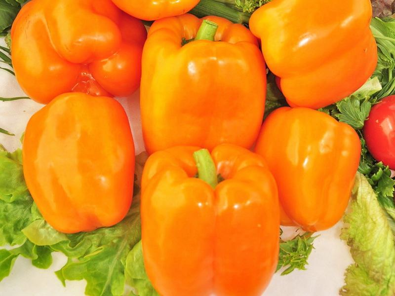 Лучшие сорта сладкого перца: описание сорта Сибирский бонус