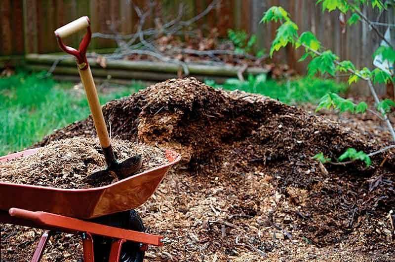 Мульчирование деревьев органическими материалами