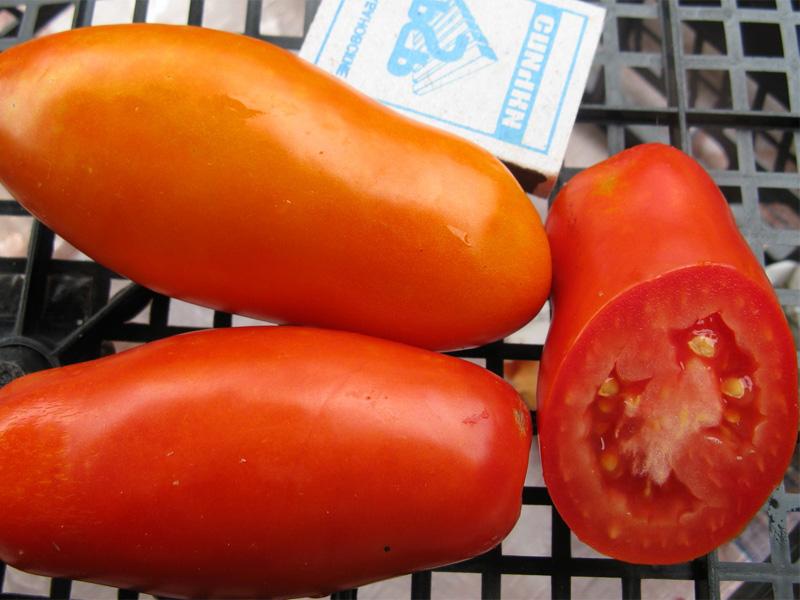 Томат Рома: описание идеального для консервации сорта и плоды в разрезе