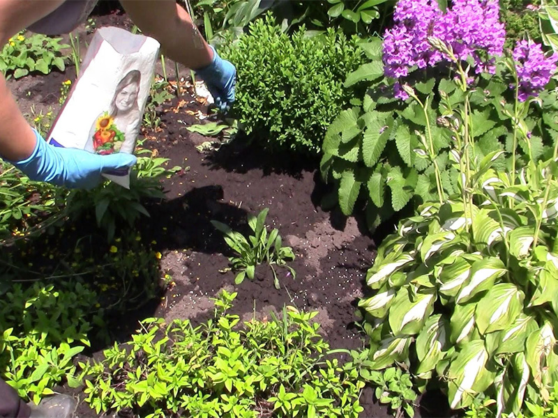 Удобрение «Растворин»: способы применения для подкормки цветов