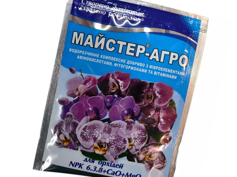 Мастер-цвет Орхидея