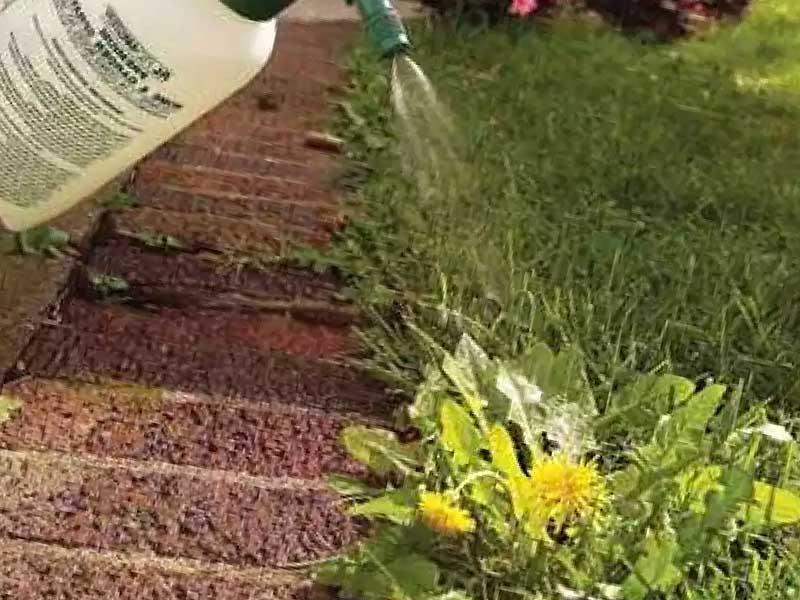 химические средства против сорняков