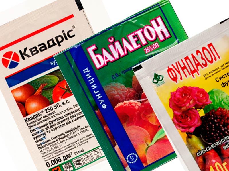 Химические препараты для опрыскивания