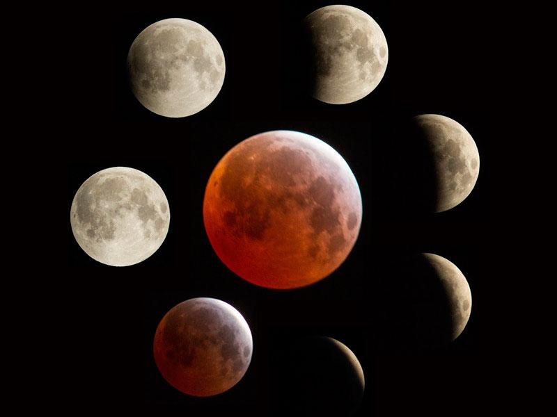 Лунный календарь садовода на февраль 2019 года