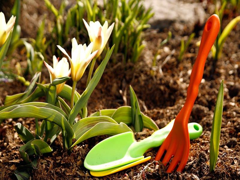 Садово-огородние работы