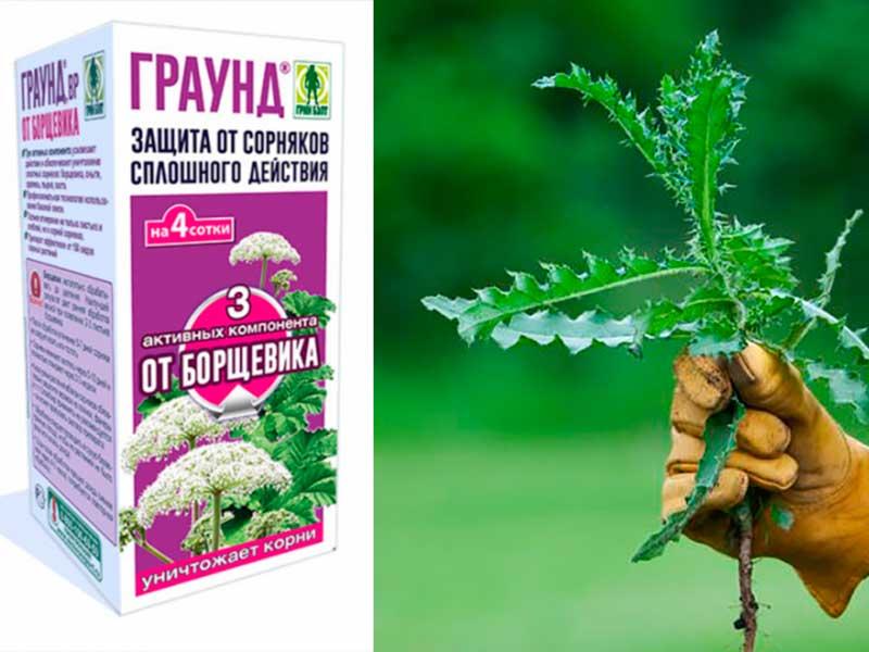 Граунд от сорняков инструкция по применению средства состав гербицида аналоги