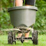 Удобрения для газона летом