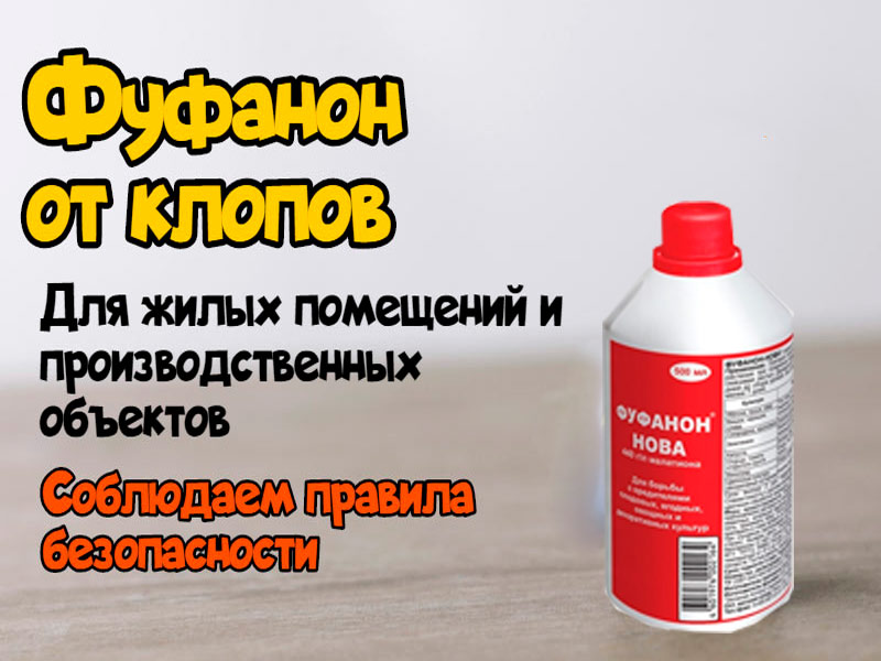 Применение инсектицида в санитарных целях