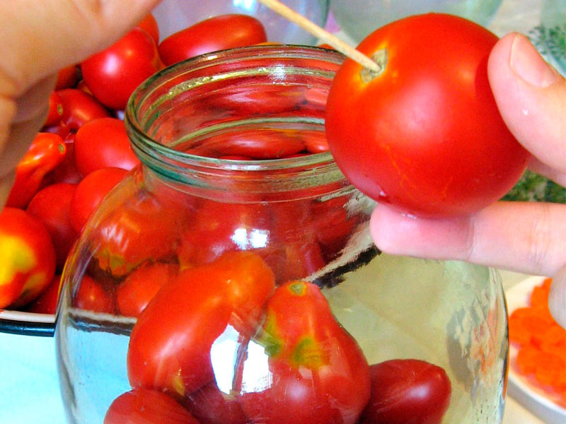 Заложить маленькие помидорчики в емкости, предварительно проколов зубочисткой кожицу в двух местах